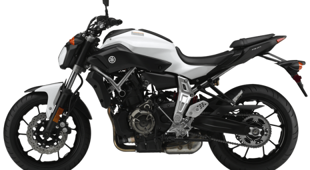 Best Motorcycles For Future Lifetime Riders